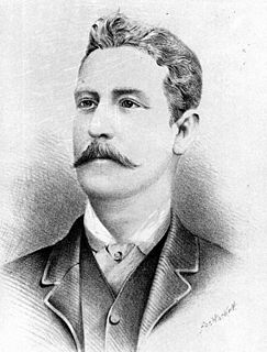 Andrew Lang Petrie Australian politician
