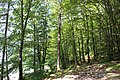 Slovenia IMG 7097 (19013578283).jpg