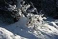Snow Sculpture - geograph.org.uk - 334201.jpg