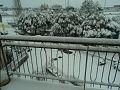 Snow in Rome 13.jpg