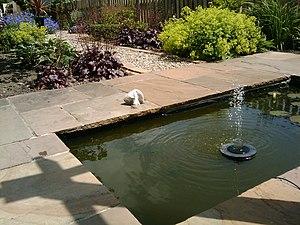 Solar-powered fountain - Image: Solar powered fountain 2