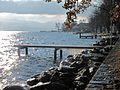 St-Prex-Lausanne-Ouchy (12.12.12) 49 (8270466500).jpg