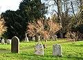 St Mary's church - churchyard - geograph.org.uk - 1606646.jpg