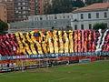 Stadio Ceravolo - panoramio.jpg