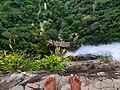Standing at the edge of diyaluma falls.jpg