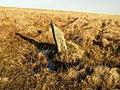 Standing stone, Ugborough Moor - geograph.org.uk - 1088633.jpg