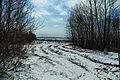 Starozhilovsky District, Ryazan Oblast, Russia - panoramio (3).jpg