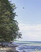Stenshuvud National Park 02.jpg