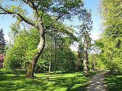 Sti Forstbotanisk Have.jpg
