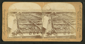 Stock yards, Kansas City, Missouri, by Keystone View Company.png