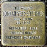Stolperstein Toni Meyer-Steineg Jena 2014.jpg
