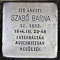 Stolperstein für Barna Szabo (Szolnok).jpg