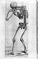 "Stooping skeleton ""Compendiosa..."", T. Geminus, 1553 Wellcome L0002877.jpg"