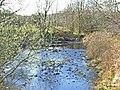 Stream at Barnsallie, near Glenluce - geograph.org.uk - 163167.jpg