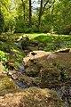 Stream in Batsford Arboretum-geograph-4480364.jpg