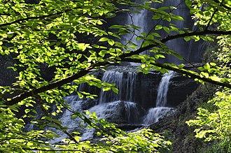 Dingmans Falls - Dingmans Falls in the Summer