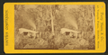 Sunday night camp, Oklawaha River, Fla, from Robert N. Dennis collection of stereoscopic views 2.png