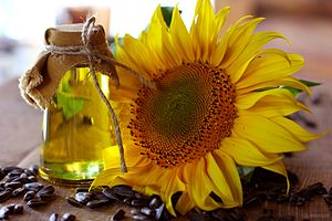 Sunflower oil - Unrefined sunflower oil with sunflower inflorescence