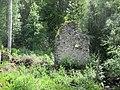 Svartnäs Nybruket ruin efter spiksmedja 3503.jpg