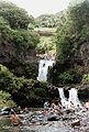 Swimmers at Kipahulu - Haleakala NP.jpg