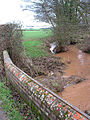 Swollen stream near Brook Farm - geograph.org.uk - 659651.jpg