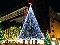 Tama-center Illumination 25 Dec 2010, 009.jpg