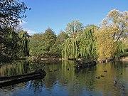 Teich im Volkspark Mariendorf