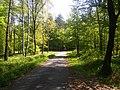 Tenczynek, Poland - panoramio (5).jpg