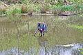 Teplá rybníček s hastrmanem.jpg