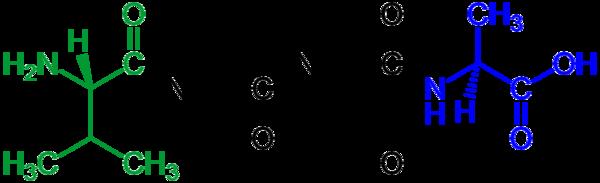 600px-Tetrapeptide_structural_formulae_v.1.png
