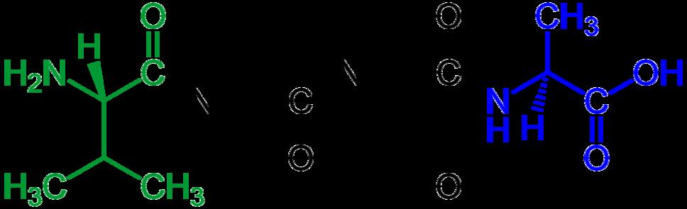 Tetrapeptide structural formulae v.1