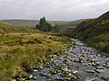 The Afon Diliw - geograph.org.uk - 979715.jpg