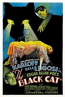 <i>The Black Cat</i> (1934 film) 1934 film by Edgar George Ulmer