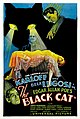 The Black Cat (1934 poster - Style D).jpg