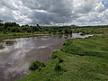 The Hippo Pool (14006654885).jpg