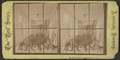 The Menagerie, Central Park, N.Y, from Robert N. Dennis collection of stereoscopic views.png