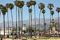 The Palms of Santa Barbara (7618168710).jpg