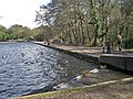 The dam at Blackroot Pool - geograph.org.uk - 1755307.jpg