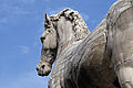 The horse at the hill (8081055413).jpg