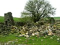 The remains of Rough Hey - geograph.org.uk - 1274137.jpg