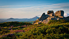Three Rock Mountain Southern Tor.jpg