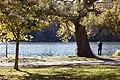 Toronto - High Park (6569652187).jpg