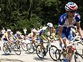 Tour de France 2010 - panoramio (11).jpg