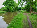 Towpath to Tuppenhurst - geograph.org.uk - 440952.jpg