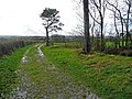 Track and footpath to Littleham church - geograph.org.uk - 667211.jpg