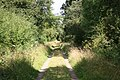 Track to Hatton Sykes - geograph.org.uk - 520209.jpg