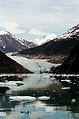 Tracy Glacier 0098.jpg