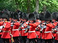 Trooping the Colour 2006 - P1110232 (169171096).jpg
