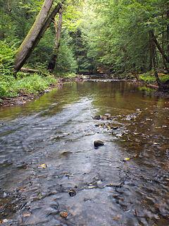 Hamilton Township, McKean County, Pennsylvania Township in Pennsylvania, United States