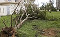 Typhoon Neoguri storms through Okinawa 140710-M-ZZ000-002.jpg